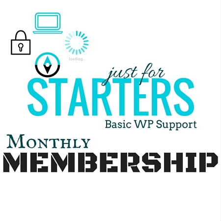 Basic WP Support Monthly Membership