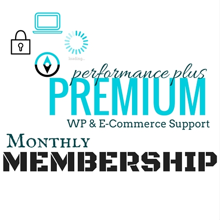 WP Premium E-Commerce Support Monthly Membership