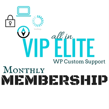 WP VIP Elite Support Monthly Membership